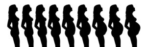 Maternity Photographer - Los Angeles Photographer silhouette through 9 months of pregnancy